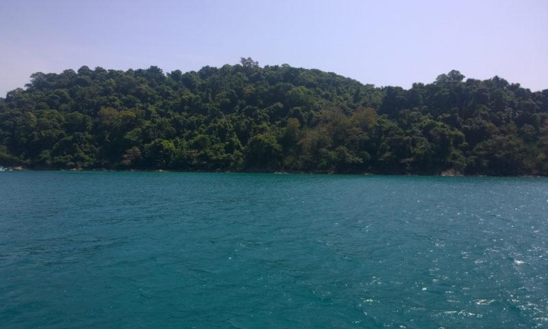 Dal mare scogli ricoperti di folta vegetazione