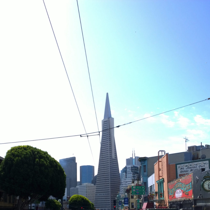 Vista dalla columbus avenue quartiere north beach Transamerica Pyramid di San Francisco