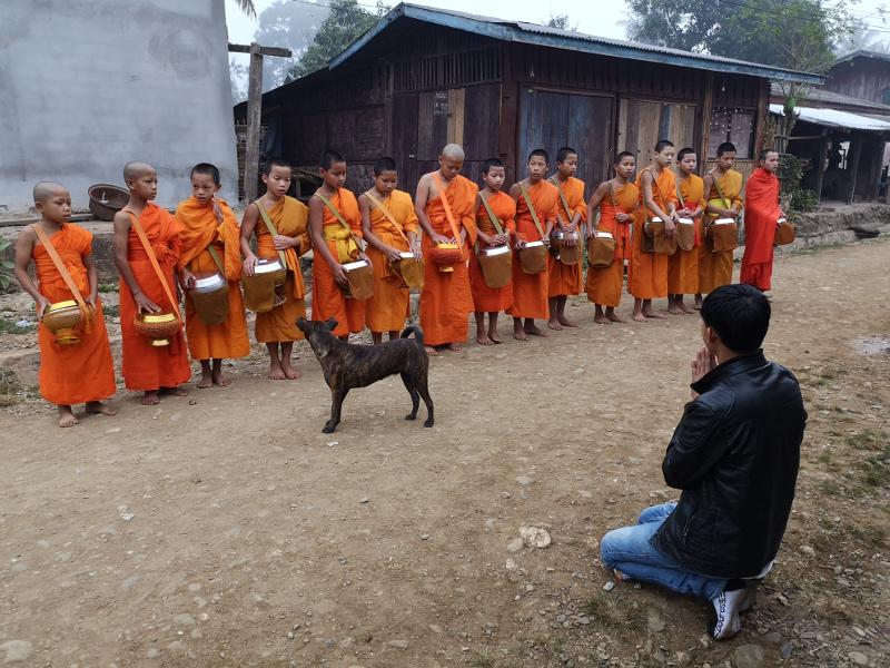 La cerimonia delle elemosine Tak Bat a Muang Noi