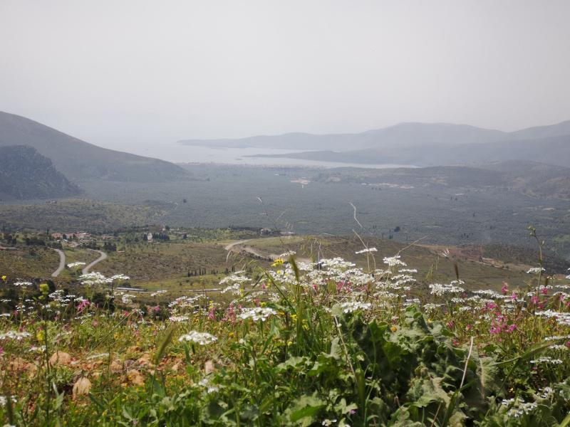 Vista da Delfi