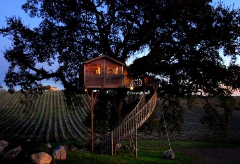 La casa sull'albero dell'agriturismo La Piantata
