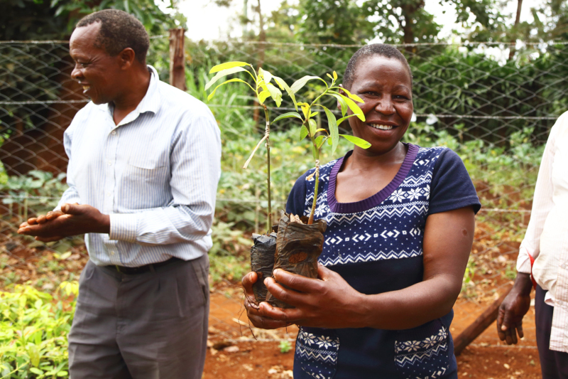 Una donna in Kenya ha ricevuto alberi da piantare.
