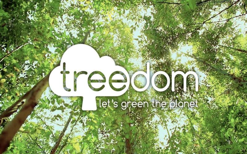 ho adottato un albero con treedom