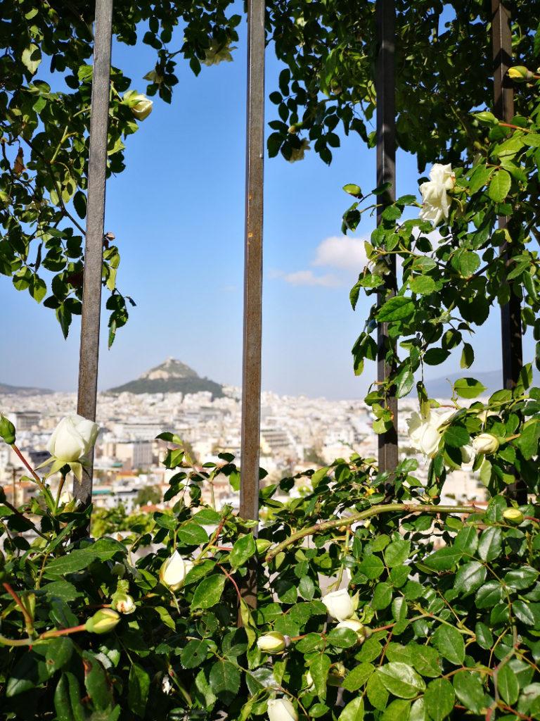 Il panorama di Licabetto da Anafitioka