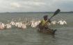 Il lago Tana in Etiopia